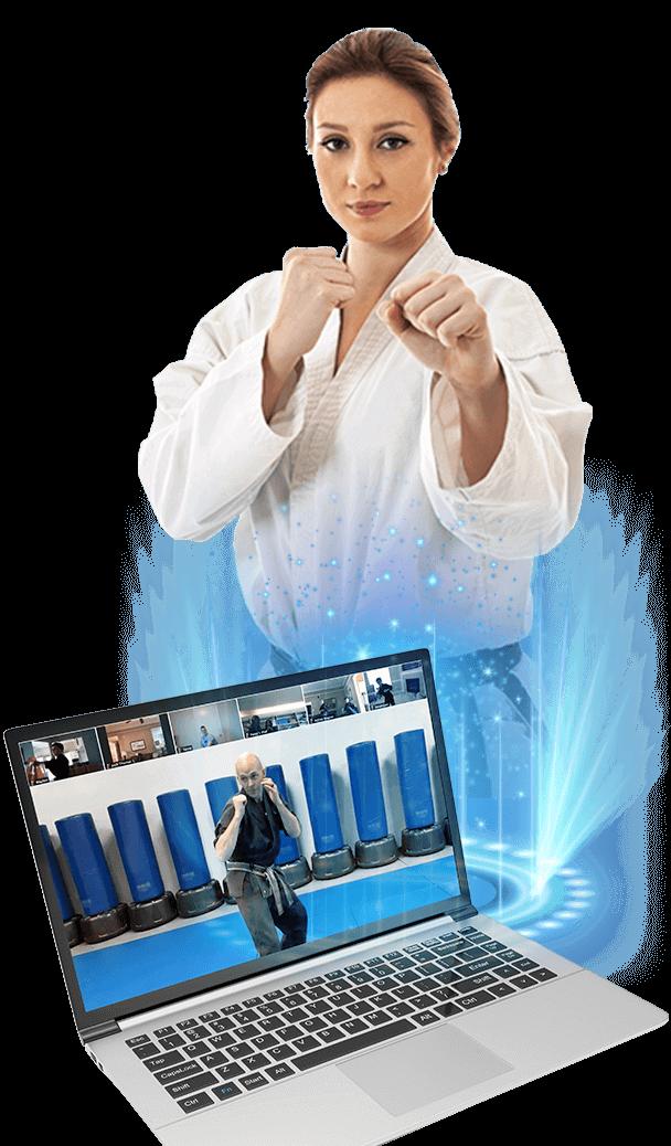 adult online martial arts classes
